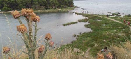 Fascinating coastal landscape