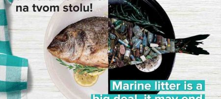 Marine litter is a big deal, it may end up in your meal!