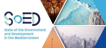 Presentation of SoED 2020 report