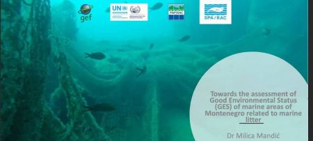 GEF ADRIATIC: virtual training on assessment of good environmental status regarding marine litter in Montenegro