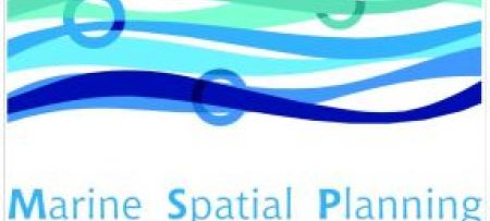 Paving the Road to Marine Spatial Planning in the Mediterranean