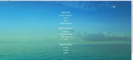 Welcome to EU MSP new website!
